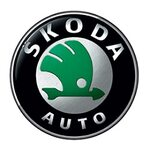 Тормозные колодки на Skoda
